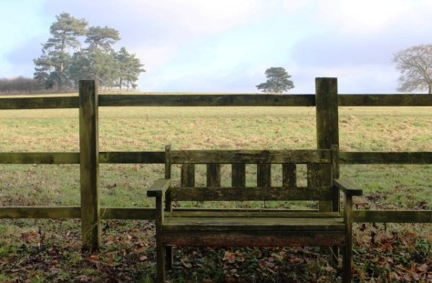 Bench at Hodsock Priory